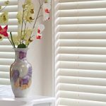 Woodlook Venetians Caloundra Sunshine Coast Security